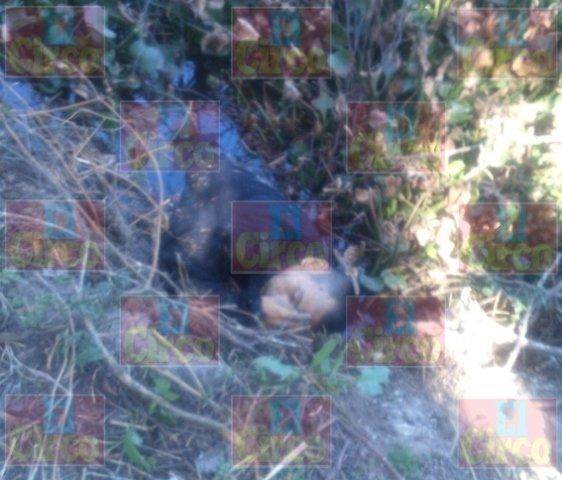 ¡Sicarios ejecutaron a una familia en Lagos de Moreno!