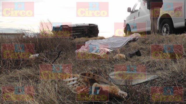 ¡Un hombre se mató tras volcar su camioneta en Fresnillo!