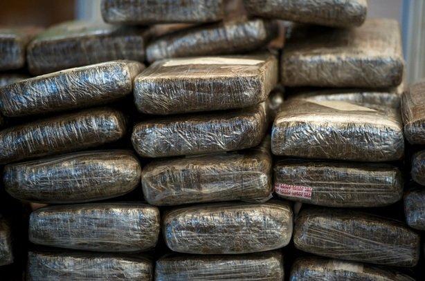 ¡Asegura la Policía Federal dos toneladas de marihuana en Sonora y San Luis Potosí!
