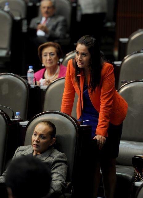 ¡En la política de austeridad de la Cámara de Diputados desaparecerán comisiones especiales: Tere Jiménez!