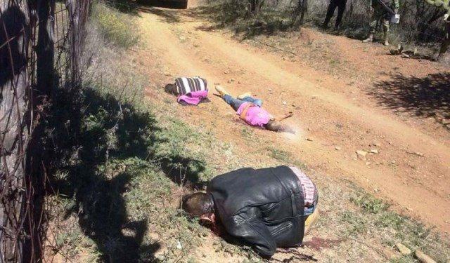 ¡Zacatecas sangriento: 69 asesinatos de enero a marzo!