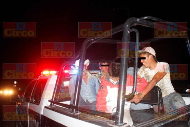 Capturaron a 5 ladrones de ganado en Lagos de Moreno y recuperan 60 animales