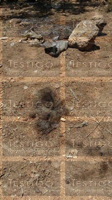 Putrefacto hallaron a otro ejecutado en Fresnillo