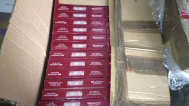 ¡La Policía Federal aseguró 30 mil cigarrillos ilegales en la central camionera de Aguascalientes!