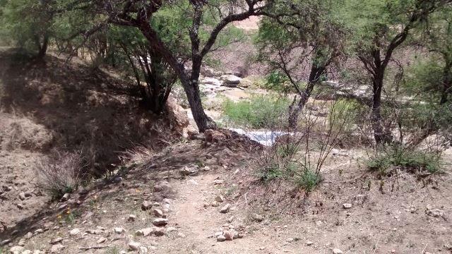 Adolescente murió ahogado en un bordo en El Chilarillo, Jalisco