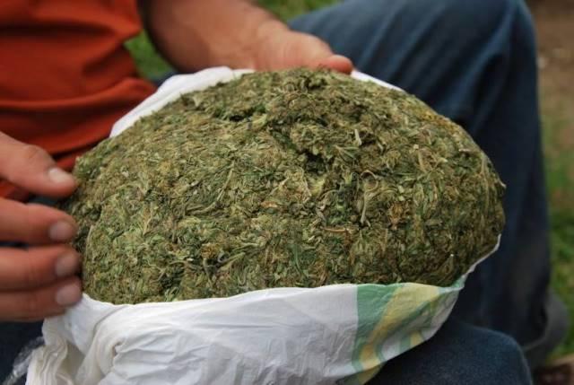 Capturaron a un sujeto con medio kilo de marihuana en Aguascalientes