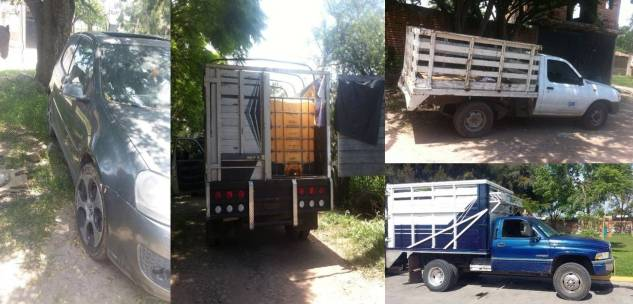¡Asegura la Fuerza Única 4 vehículos con combustible robado en Jalisco!