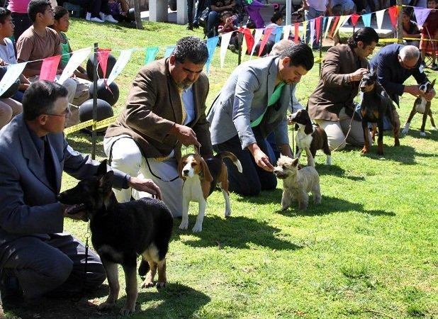 ¡Gran respuesta tuvo la Expo Can organizada por el MunicipioAgs!