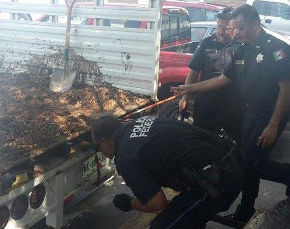 ¡Asegura la Policía Federal 20 kg. de cocaína adentro de una camioneta!