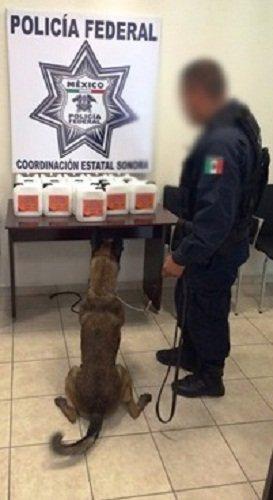 ¡Aseguran más de 60 litros de metanfetamina líquida en Sonora!