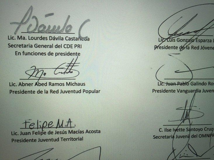 ¡La diputada local Lourdes Dávila podría gozar de tres sueldos de cargos diferentes!