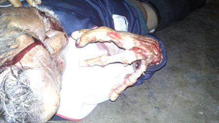 ¡Alcohólico murió en su casa en Aguascalientes y un perro le devoró una mano!