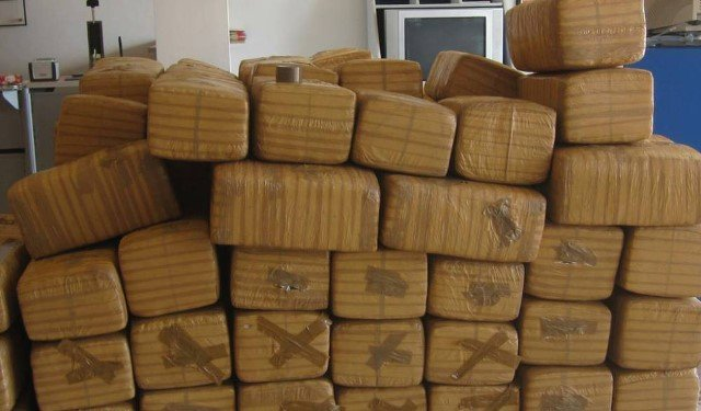 ¡Militares aseguraron más de una tonelada de marihuana en Villa de Cos, Zacatecas!