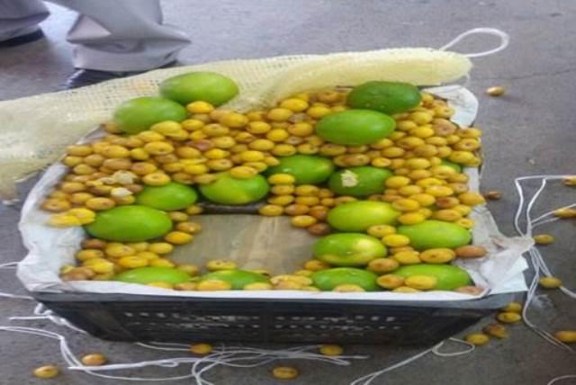 ¡La Policía Federal aseguró dos cajas con más de 63 kilos de marihuana en la Central Camionera de la ciudad de México!