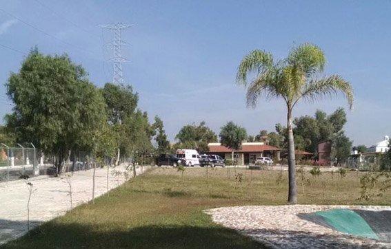 ¡Un hombre de 84 años de edad se dio un balazo en la cabeza en Aguascalientes; suman 115!
