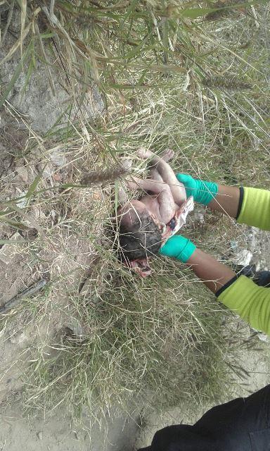 ¡Tiraron a una bebé recién nacida muerta a un arroyo en Aguascalientes!