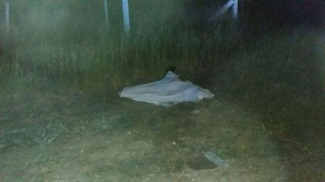 """¡Vehículo """"fantasma"""" arrolló y mató a un peatón en Aguascalientes!"""