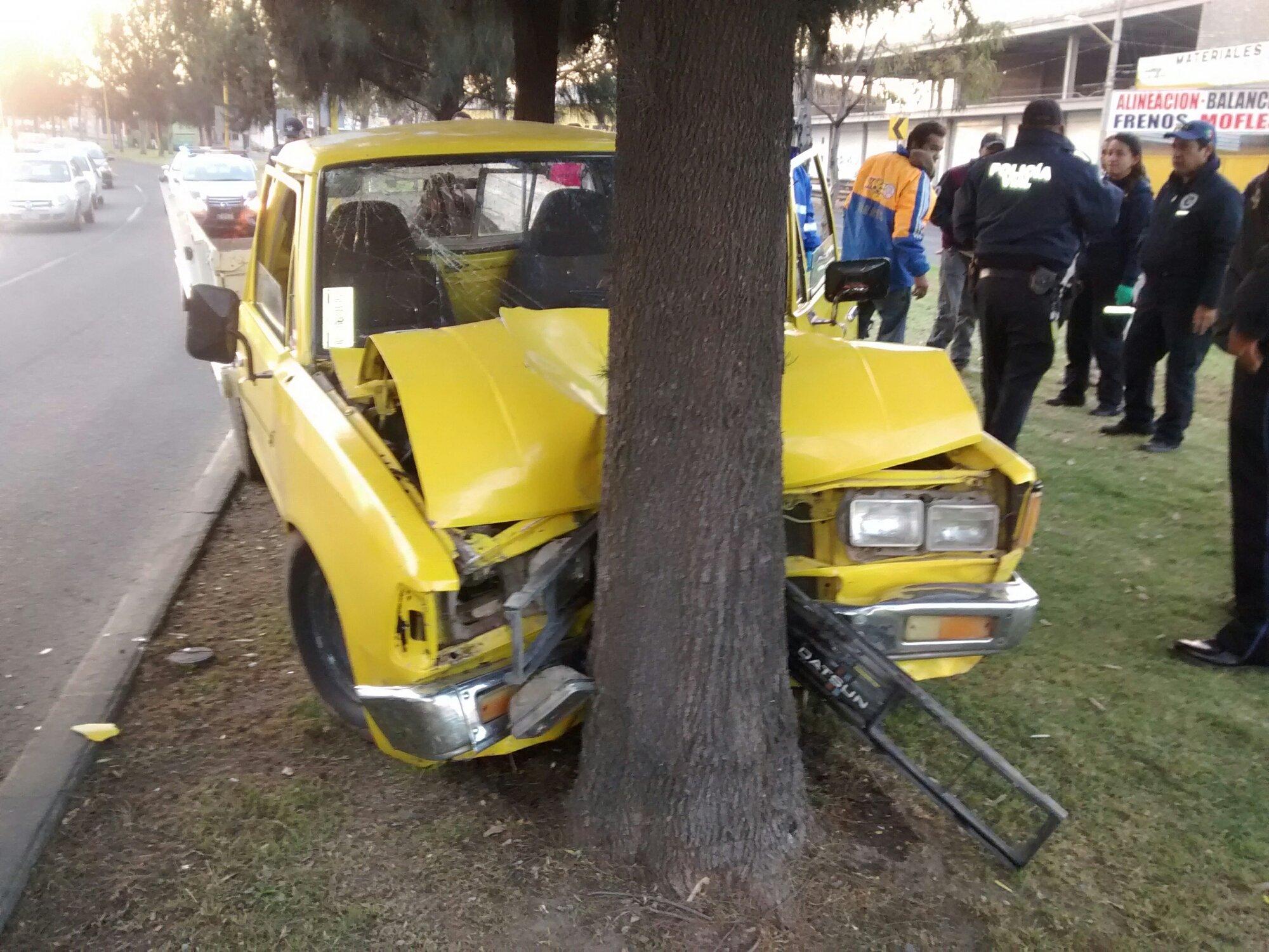 Se quedó sin frenos y terminó chocando contra un árbol