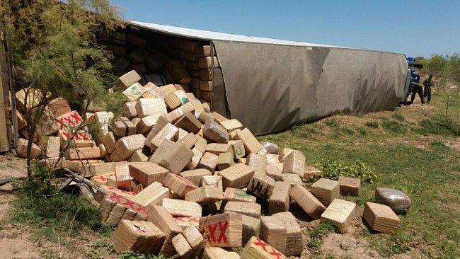 Personal de la SEDENA y Policía Federal aseguran mas de 24 toneladas de marihuana en Navojoa, Sonora!