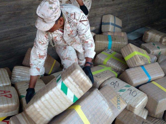 GALERIA/Personal de la SEDENA y Policía Federal aseguran mas de 24 toneladas de mota en Navojoa, Sonora!