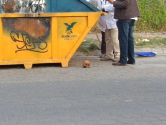 Macabro hallazgo, localizan dos osamentas en un contenedor en Aguascalientes