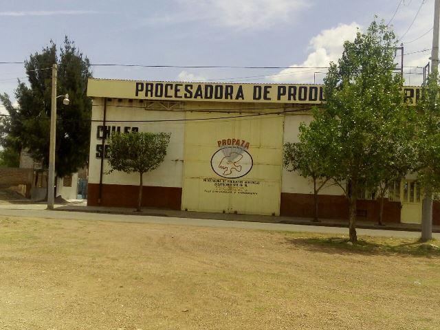 """¡Comando armado ejecutó a """"El Marro"""" en la azotea de su casa en Calera, Zacatecas!"""