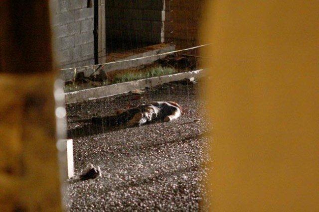 ¡Joven fue ejecutado de 2 balazos en la colonia C.T.M. en Zacatecas!