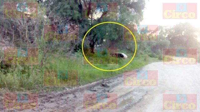 ¡Hombre se suicidó ahorcándose en un árbol en Lagos de Moreno!