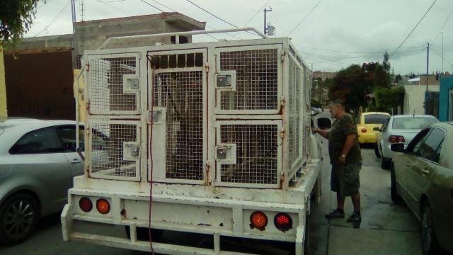 ¡Hombre resultó lesionado tras ser atacado por un perro pitbull en Aguascalientes!