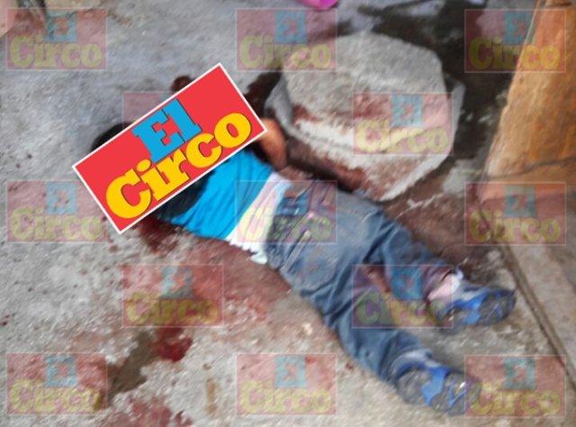 ¡Un perro Pitbull mató a niño de 2 años de edad en Zapopan, Jalisco!