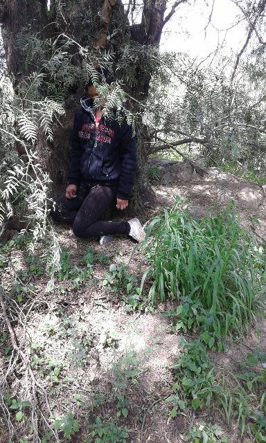 ¡Mujer se suicidó ahorcándose en un árbol en Aguascalientes!