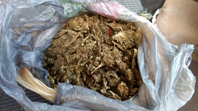 ¡Detuvieron a 3 traficantes de drogas con casi medio kilo de marihuana en Aguascalientes!