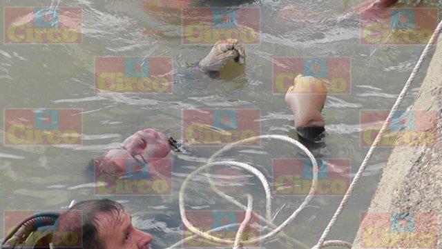 ¡Joven deprimido se suicidó ahogándose en una presa en Fresnillo!