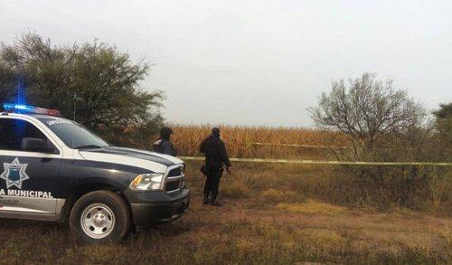 ¡Decapitan a un hombre y arrojan sus restos en un barbecho en Chupaderos en Zacatecas!