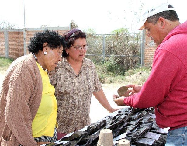 ¡Arrancó Secretaría de Medio Ambiente y Desarrollo Sustentable del Municipio programa Micro Huertos Familiares!