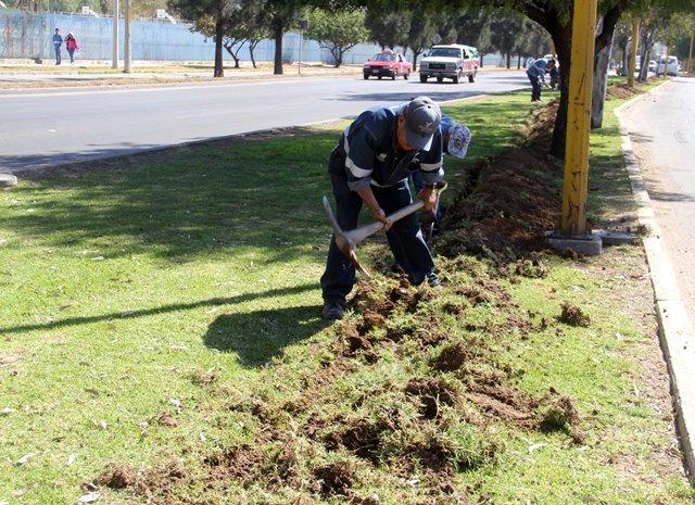 ¡Construye Gobierno Municipal nueva línea gris para la reutilización de agua en el riego de áreas verdes!