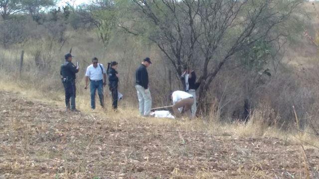 ¡Trailero se suicidó colgándose de la rama de un árbol en Aguascalientes!