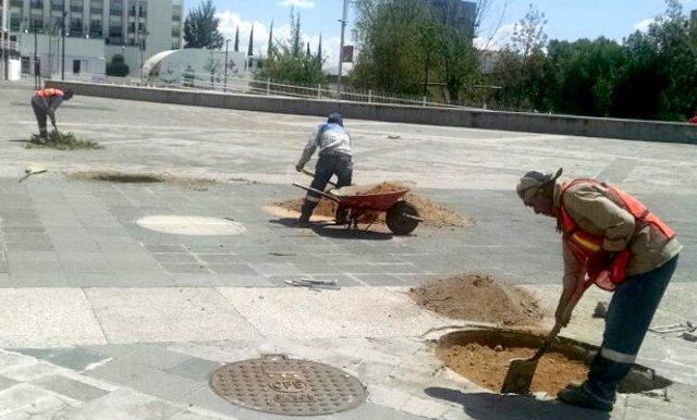 ¡Comienza Gobierno Municipal mantenimiento de vialidades del perímetro ferial!