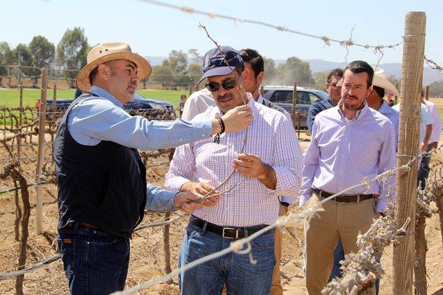 ¡Apuesta Gobierno del Estado por ampliar sectores económicos de Aguascalientes!