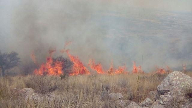 ¡Impresionante incendio en el Cerro del Picacho en Aguascalientes consumió 200 hectáreas!
