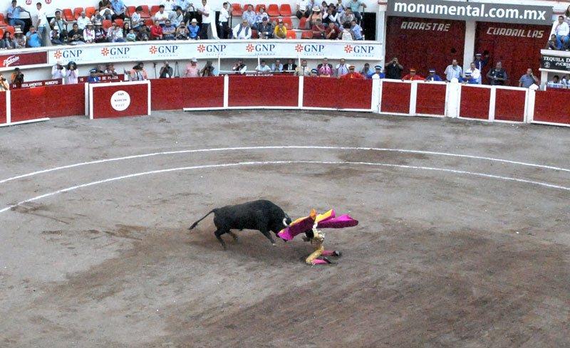 ¡Ignacio Garibay sin suerte y arrollado por un toro en Aguascalientes!