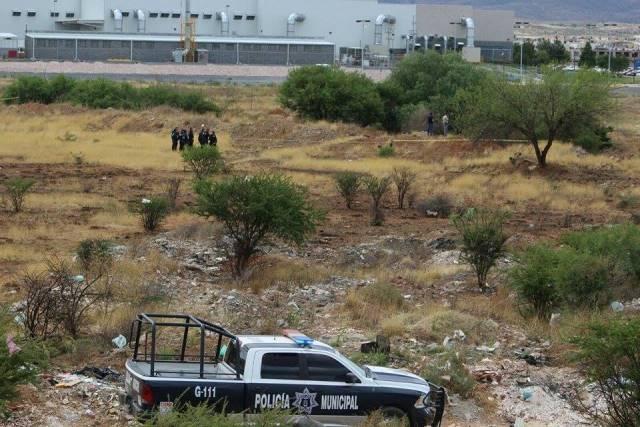 ¡Hallaron a un hombre colgado de un árbol y putrefacto en Guadalupe, Zacatecas!
