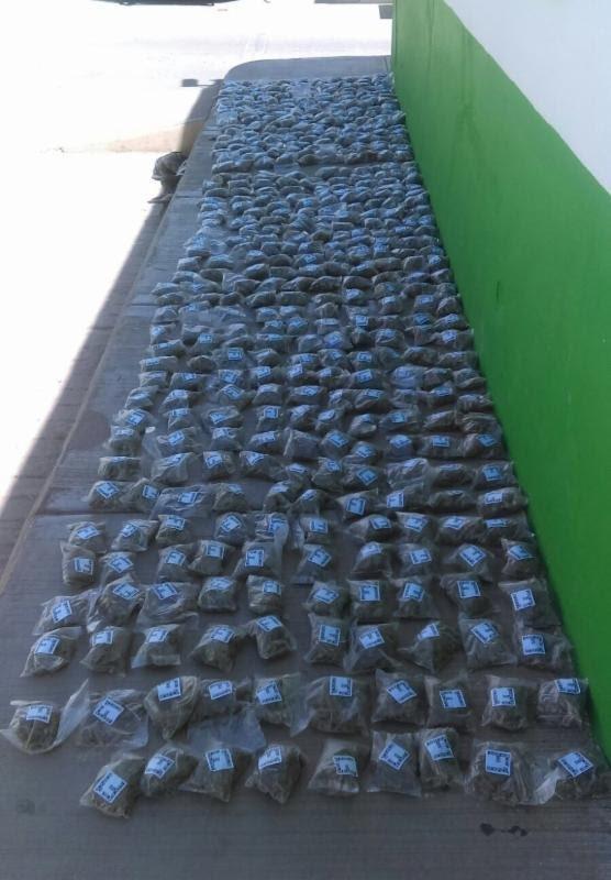 ¡Elementos de la PEP detuvieron a 3 sujetos con 479 dosis de marihuana en Zacatecas!