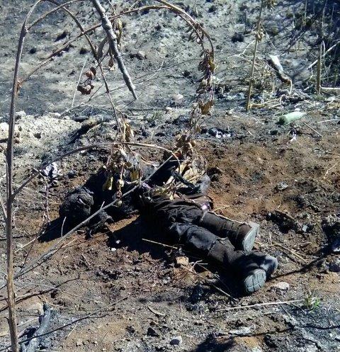 ¡Mujer michoacana desaparecida en Aguascalientes fue encontrada asesinada!