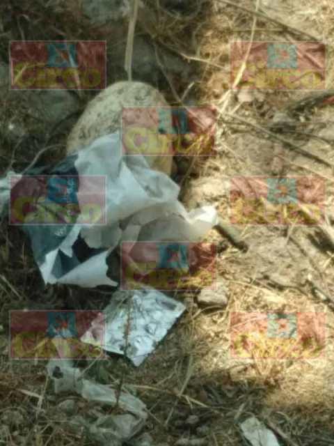 ¡Hallaron un cráneo humano en Lagos de Moreno!