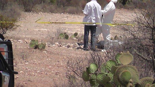 ¡Hallaron a un hombre desmembrado en Picones y a otro ejecutado en Trancoso, Zacatecas!