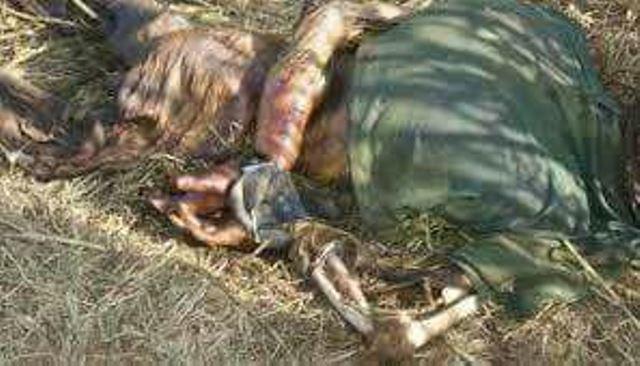 ¡Hombre de Calera fue hallado ejecutado, putrefacto y carcomido por animales en Felipe Pescador, Zacatecas!