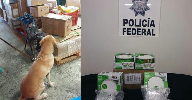 ¡Policía Federal aseguró 4 kilos de marihuana en refractarios de plástico en una empresa de paquetería en Guadalajara!