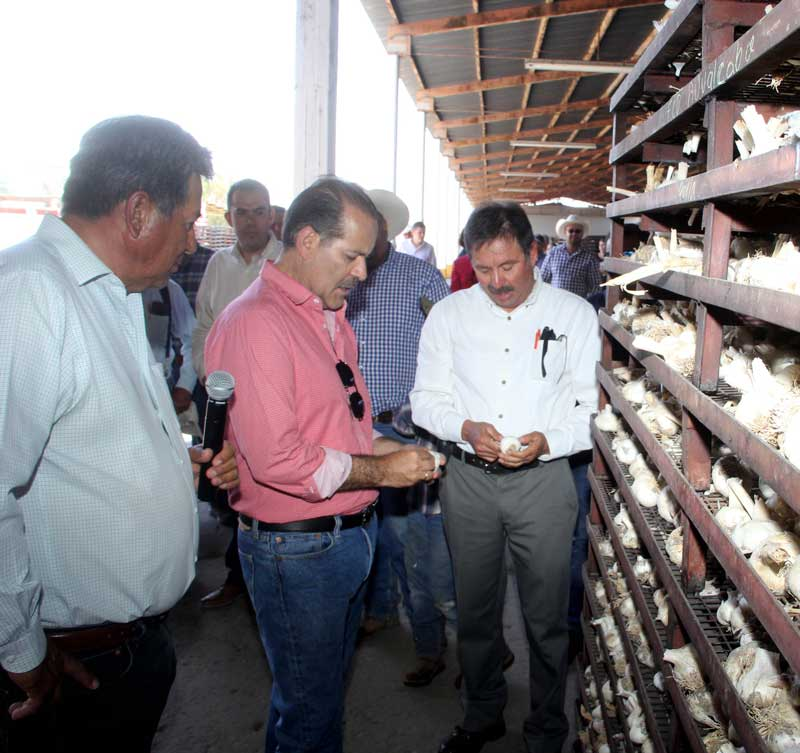 ¡Gobierno del Estado trabaja para hacer más rentable el campo de Aguascalientes!