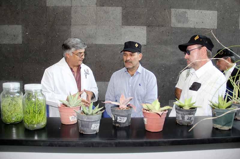 ¡Gobierno del estado y UAA aliados por un mismo proyecto, Aguascalientes!